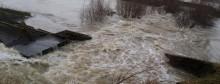 inundatie liebling